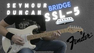 Seymour Duncan SSL-5 bridge pickup Test on Fender Stratocaster