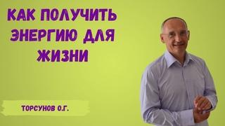 Торсунов О.Г.  Как получить энергию для жизни
