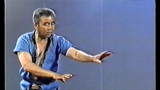崴 WAI -  At the origin of Martial Art