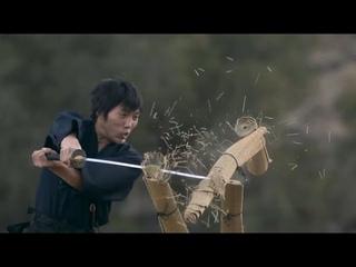Разрубить человека мечом пополам возможно ли?