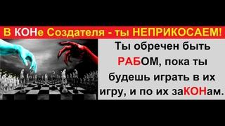 В РФ НЕТ оригиналов законов