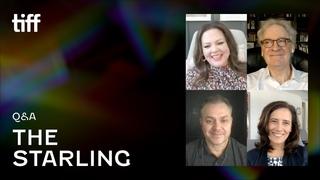 THE STARLING Q&A | TIFF 2021