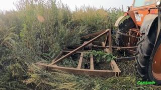 Боремся с сорняками выше человеческого роста. Вывозим рулоны сена. Самодельный триммер для трактора.