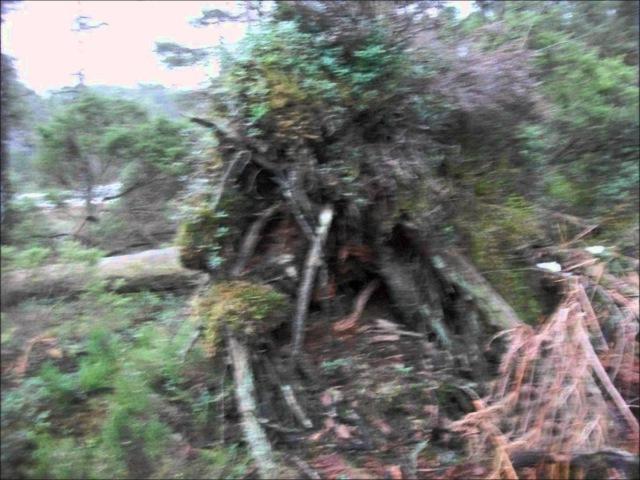 Finntroll Grottans barn music video