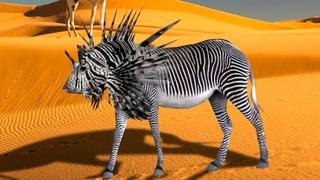 Самые Редкие Животные в Мире, о Существовании Которых Вы не Знали
