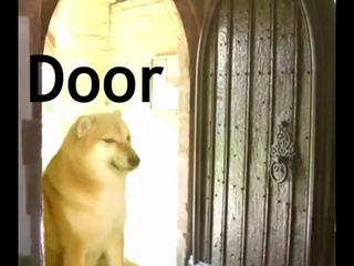 Dorime meme but it's just door