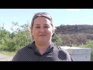 В Заполярном ремонтируют дорогу на улице Юбилейной | Печенга-ТВ