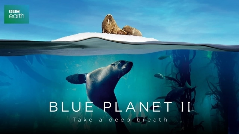 Голубая планета 2 4 серия Большая синева Blue Planet II 2017