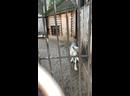 Видео от Татьяны Зайцевой