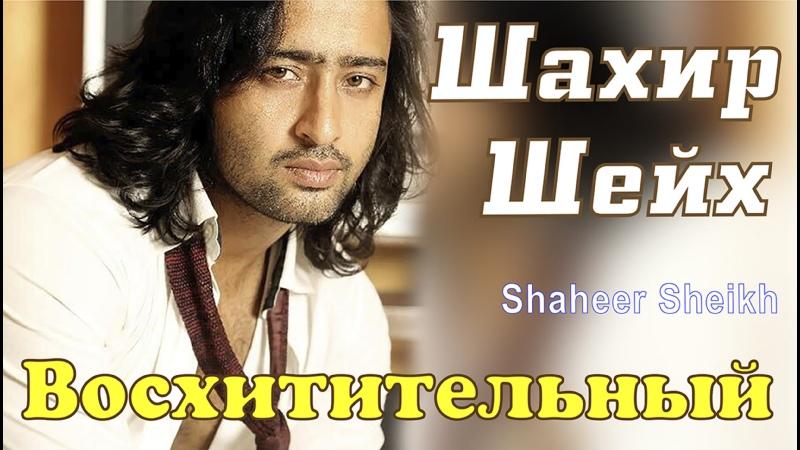 Восхитительный Шахир Шейх