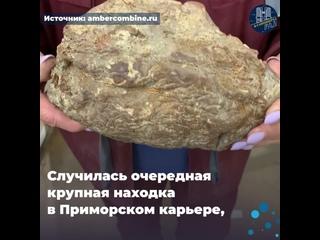 Новый рекорд Янтарного комбината