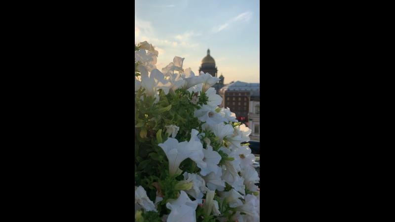 Видео от Александры Капровой