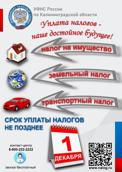 #оплата #имущество #транспорт #налоги #налоговыйв...
