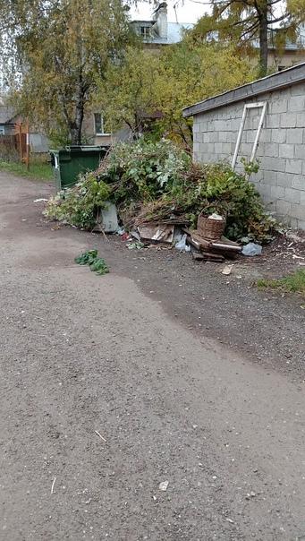 Не вывозится крупногабаритный мусор с мусоросбороч...