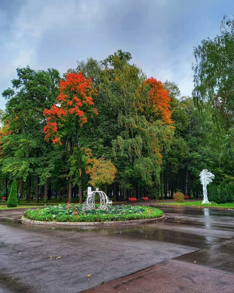 После дождя... ????????  Фото: elisavetka_tula Тула