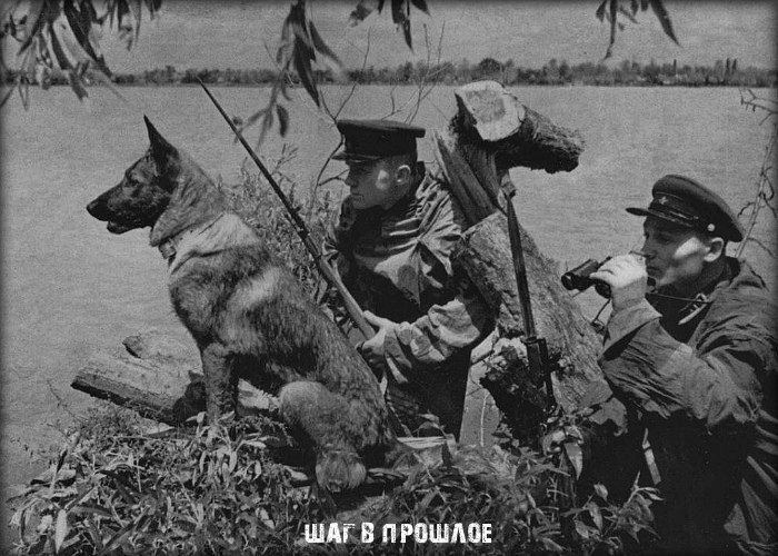 Как 150 пограничных псов «порвали» полк фашистов в рукопашке