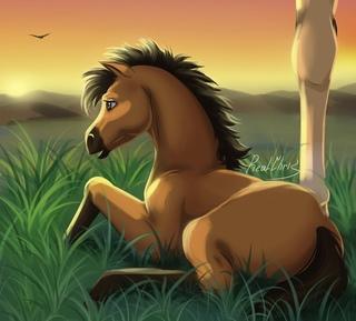 Ваши рисунки лошадей