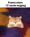 Васильева Саша   Санкт-Петербург   3