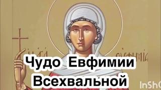 Воспоминание чуда святой Евфимии Всехвальной - 24 июля. Как и где произошло чудо. Святая Евфимия
