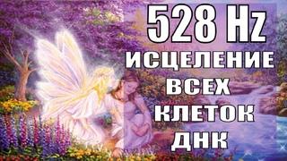528 Гц🎇Код Исцеления ДНК и Поврежденных Органов🎇Исцеление Звуком