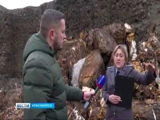 За красноярским Солнечным обнаружена свалка токсичных отходов