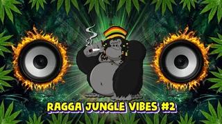 2021 Ragga Jungle Drum & Bass Vibes #2 (Reggae DnB Mix)