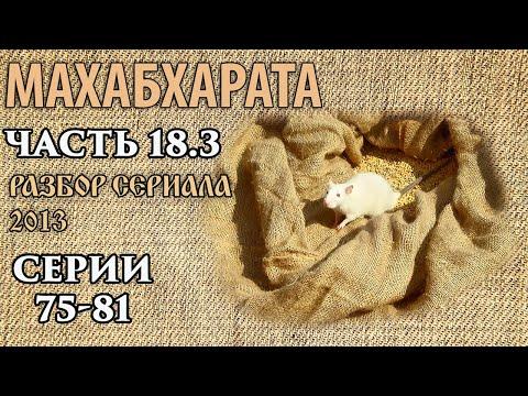 Махабхарата Часть 18 3 Разбор сериала Серии 75 81